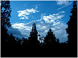 blue night sky big bear.